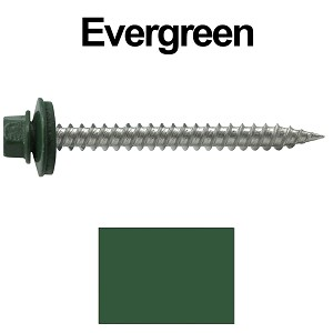 "9 x 2"" Stainless Steel Metal Roofing Screws (EVERGREEN)"